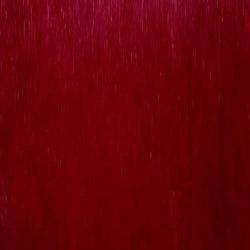 7005-Cardinal1[1]